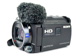 Sony HDR PJ780